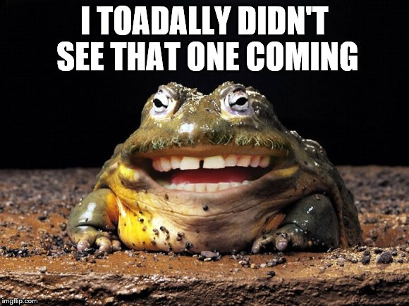 I TOADALLY DIDN'T SEE THAT ONE COMING | made w/ Imgflip meme maker