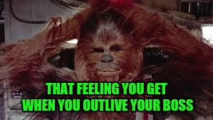 Rookie Lives Matter | THAT FEELING YOU GET WHEN YOU OUTLIVE YOUR BOSS | image tagged in chewie | made w/ Imgflip meme maker