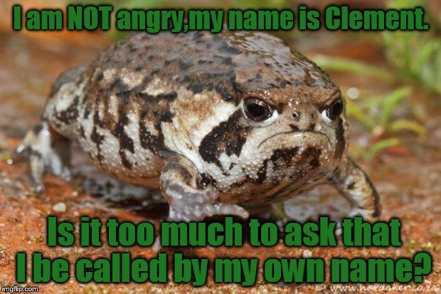 I am NOT angry,my name is Clement. Is it too much to ask that I be called by my own name? | made w/ Imgflip meme maker