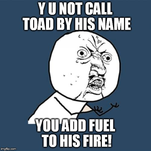 Y U No Meme | Y U NOT CALL TOAD BY HIS NAME YOU ADD FUEL TO HIS FIRE! | image tagged in memes,y u no | made w/ Imgflip meme maker