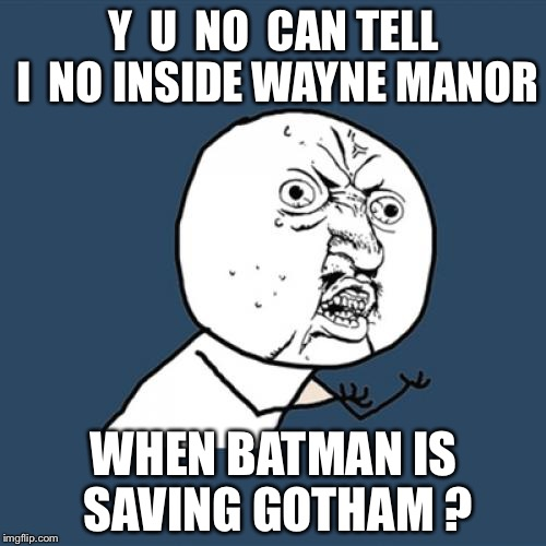 Y U No Meme | Y  U  NO  CAN TELL I  NO INSIDE WAYNE MANOR WHEN BATMAN IS SAVING GOTHAM ? | image tagged in memes,y u no | made w/ Imgflip meme maker