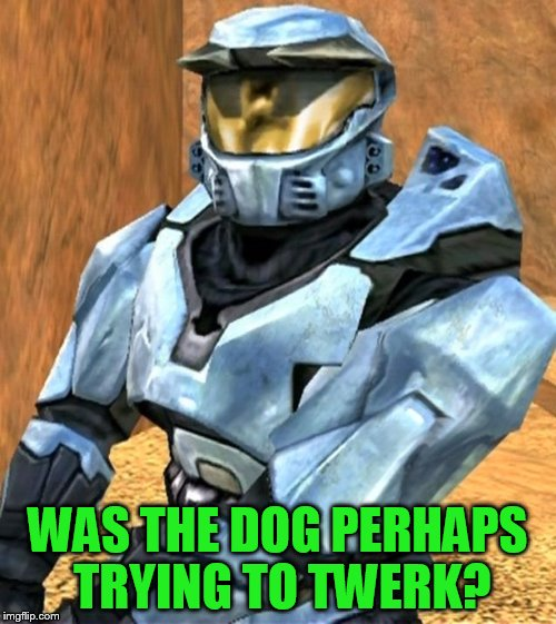 WAS THE DOG PERHAPS TRYING TO TWERK? | image tagged in church rvb season 1 | made w/ Imgflip meme maker