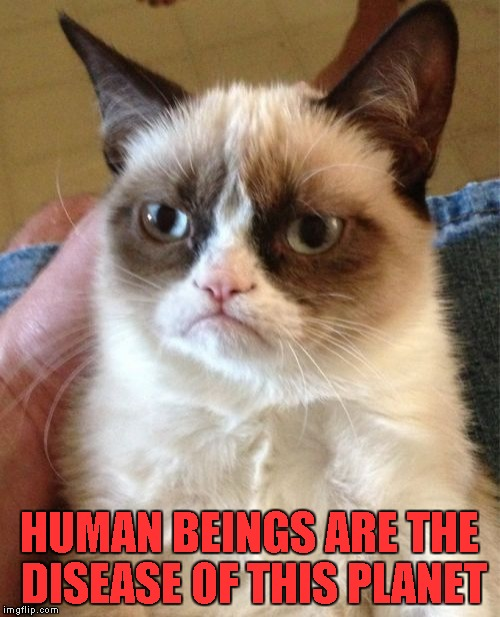 Grumpy Cat Meme | HUMAN BEINGS ARE THE DISEASE OF THIS PLANET | image tagged in memes,grumpy cat | made w/ Imgflip meme maker