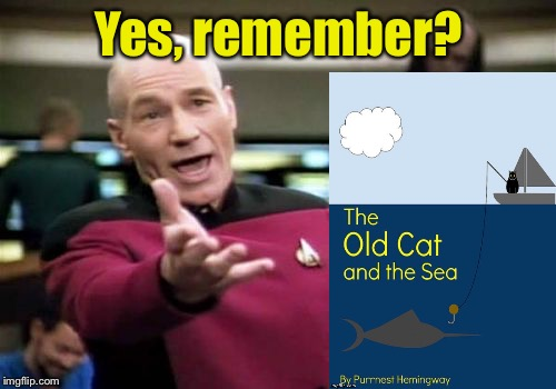 Picard Wtf Meme | Yes, remember? | image tagged in memes,picard wtf | made w/ Imgflip meme maker
