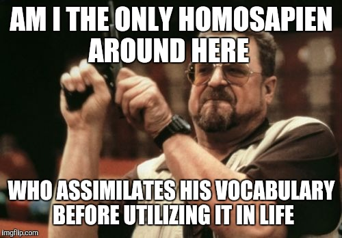 Am I The Only One Around Here Meme | AM I THE ONLY HOMOSAPIEN AROUND HERE WHO ASSIMILATES HIS VOCABULARY BEFORE UTILIZING IT IN LIFE | image tagged in memes,am i the only one around here | made w/ Imgflip meme maker