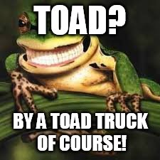 TOAD? BY A TOAD TRUCK OF COURSE! | made w/ Imgflip meme maker