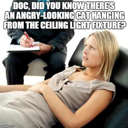 DOC, DID YOU KNOW THERE'S AN ANGRY-LOOKING CAT HANGING FROM THE CEILING LIGHT FIXTURE? | made w/ Imgflip meme maker