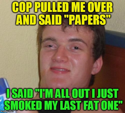 10 Guy Meme | COP PULLED ME OVER AND SAID ''PAPERS'' I SAID ''I'M ALL OUT I JUST SMOKED MY LAST FAT ONE'' | image tagged in memes,10 guy | made w/ Imgflip meme maker