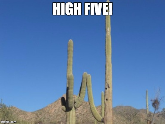 HIGH FIVE! | made w/ Imgflip meme maker
