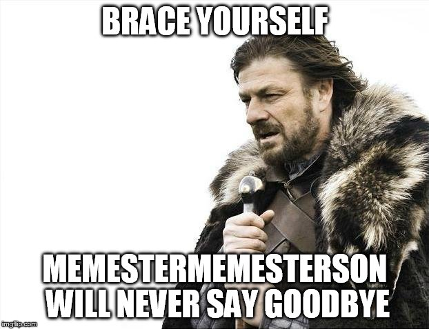 Brace Yourselves X is Coming Meme | BRACE YOURSELF MEMESTERMEMESTERSON WILL NEVER SAY GOODBYE | image tagged in memes,brace yourselves x is coming | made w/ Imgflip meme maker