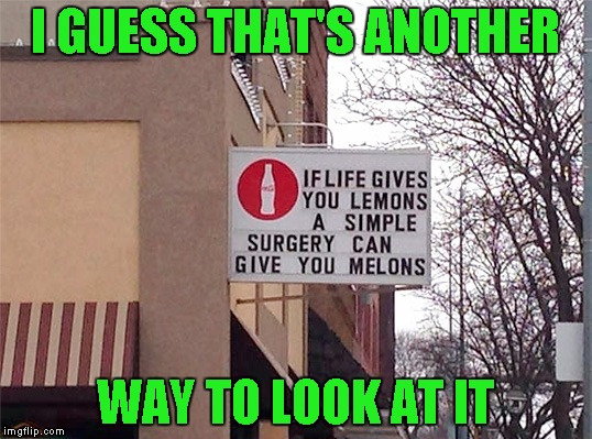 If I had my own, I'd play with them for hours...LOL | I GUESS THAT'S ANOTHER WAY TO LOOK AT IT | image tagged in when life gives you lemons,memes,lemons,funny,funny signs | made w/ Imgflip meme maker