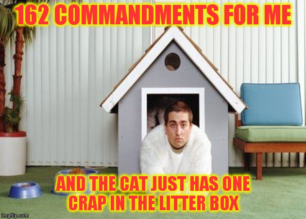 162 COMMANDMENTS FOR ME AND THE CAT JUST HAS ONE CRAP IN THE LITTER BOX | made w/ Imgflip meme maker