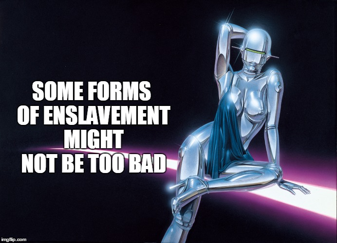SOME FORMS OF ENSLAVEMENT MIGHT NOT BE TOO BAD | made w/ Imgflip meme maker
