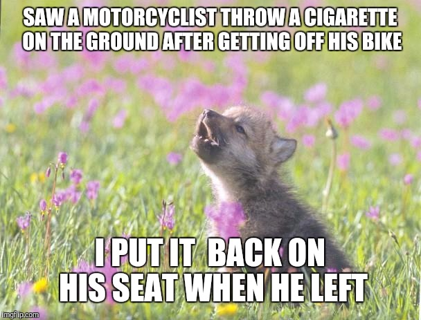 Baby Insanity Wolf Meme | SAW A MOTORCYCLIST THROW A CIGARETTE ON THE GROUND AFTER GETTING OFF HIS BIKE I PUT IT  BACK ON HIS SEAT WHEN HE LEFT | image tagged in memes,baby insanity wolf,AdviceAnimals | made w/ Imgflip meme maker