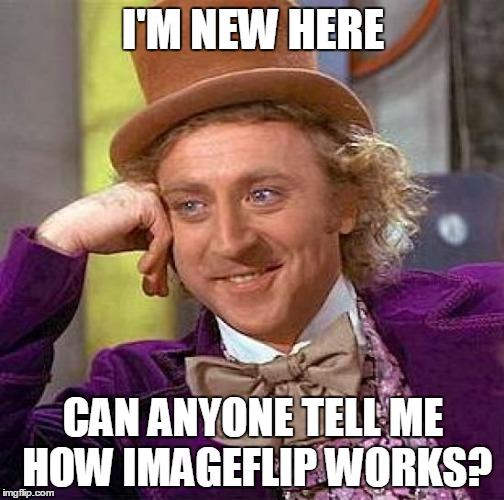 Creepy Condescending Wonka Meme | I'M NEW HERE CAN ANYONE TELL ME HOW IMAGEFLIP WORKS? | image tagged in memes,creepy condescending wonka | made w/ Imgflip meme maker