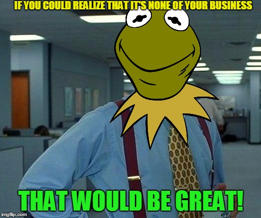 That Would Be Great Meme | IF YOU COULD REALIZE THAT IT'S NONE OF YOUR BUSINESS THAT WOULD BE GREAT! | image tagged in memes,that would be great | made w/ Imgflip meme maker