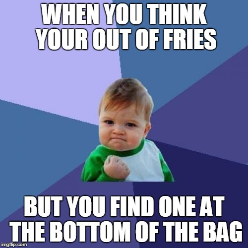 Success Kid Meme | WHEN YOU THINK YOUR OUT OF FRIES BUT YOU FIND ONE AT THE BOTTOM OF THE BAG | image tagged in memes,success kid | made w/ Imgflip meme maker