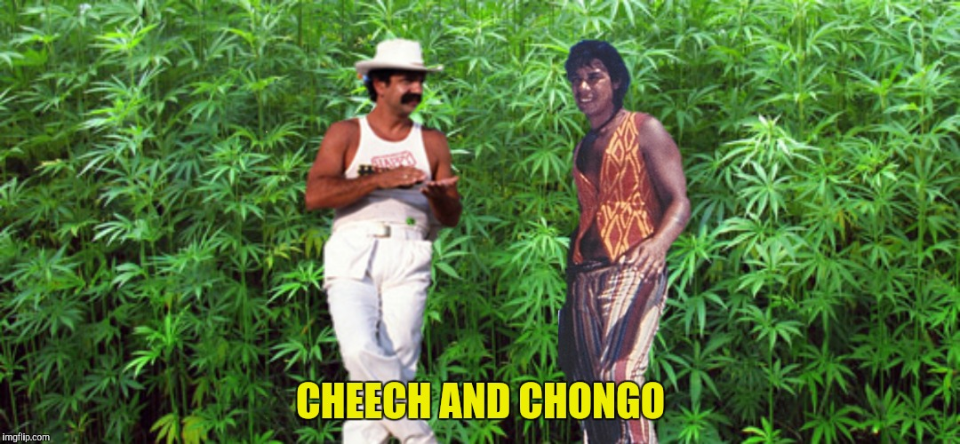 "Anybody remember ""Danger Island""?...""Uh, oh, Chongo!"" 