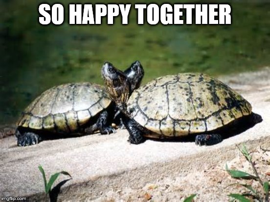 SO HAPPY TOGETHER | made w/ Imgflip meme maker