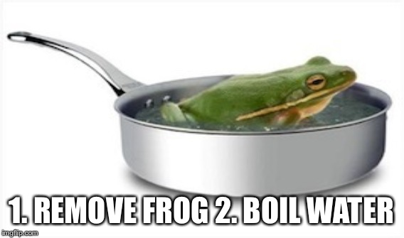 1. REMOVE FROG 2. BOIL WATER | made w/ Imgflip meme maker