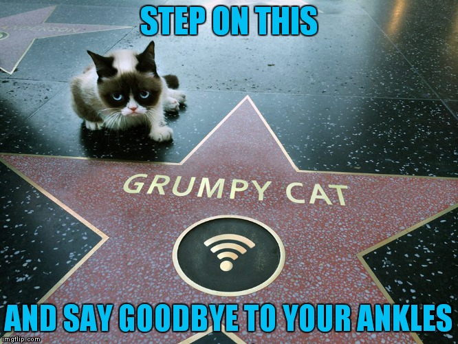 Walk this way.. Limp away.. |  STEP ON THIS; AND SAY GOODBYE TO YOUR ANKLES | image tagged in grumpy cat,grumpy cat star wars,hollywood,famous | made w/ Imgflip meme maker