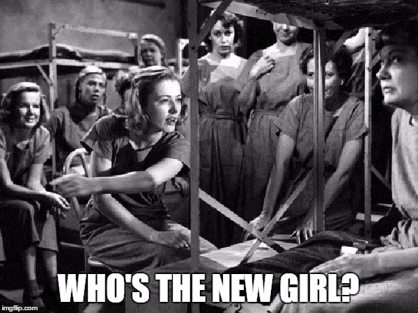 WHO'S THE NEW GIRL? | made w/ Imgflip meme maker