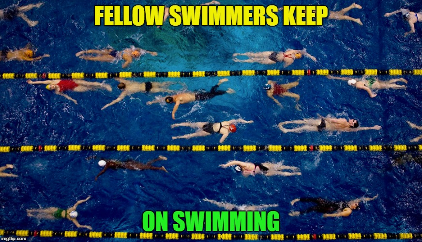 FELLOW SWIMMERS KEEP ON SWIMMING | made w/ Imgflip meme maker
