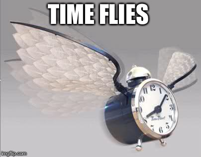 TIME FLIES | made w/ Imgflip meme maker
