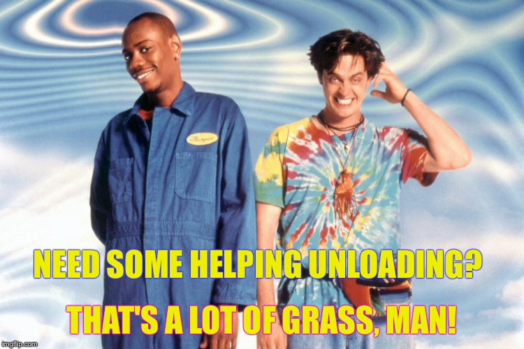 NEED SOME HELPING UNLOADING? THAT'S A LOT OF GRASS, MAN! | made w/ Imgflip meme maker