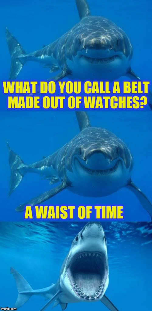 Bad Shark Pun  | WHAT DO YOU CALL A BELT MADE OUT OF WATCHES? A WAIST OF TIME | image tagged in bad shark pun,watch,waist of time,funny memes,jokes,laughs | made w/ Imgflip meme maker