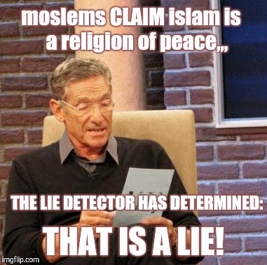 Maury Lie Detector Meme | moslems CLAIM islam is             a religion of peace,,, THAT IS A LIE! THE LIE DETECTOR HAS DETERMINED: | image tagged in memes,maury lie detector | made w/ Imgflip meme maker