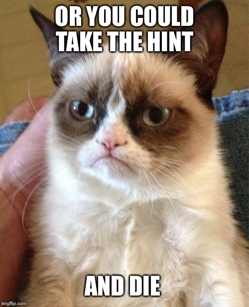 Grumpy Cat Meme | OR YOU COULD TAKE THE HINT AND DIE | image tagged in memes,grumpy cat | made w/ Imgflip meme maker