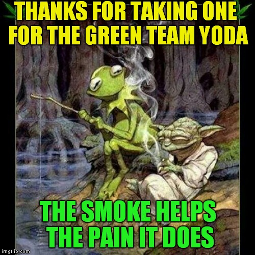 THANKS FOR TAKING ONE FOR THE GREEN TEAM YODA THE SMOKE HELPS THE PAIN IT DOES | made w/ Imgflip meme maker