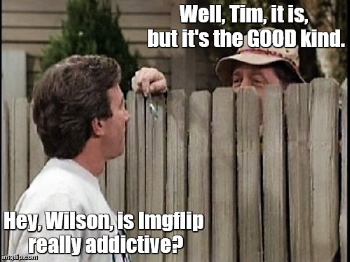 Home Improvement Tim and Wilson | Well, Tim, it is, but it's the GOOD kind. Hey, Wilson, is Imgflip really addictive? | image tagged in home improvement tim and wilson | made w/ Imgflip meme maker