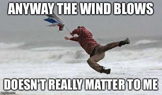 ANYWAY THE WIND BLOWS DOESN'T REALLY MATTER TO ME | made w/ Imgflip meme maker