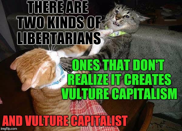 Libertarian Education | THERE ARE TWO KINDS OF LIBERTARIANS AND VULTURE CAPITALIST ONES THAT DON'T REALIZE IT CREATES VULTURE CAPITALISM | image tagged in two cats fighting for real,vulture,capitalism,capitalist,libertarian,libertarianism | made w/ Imgflip meme maker