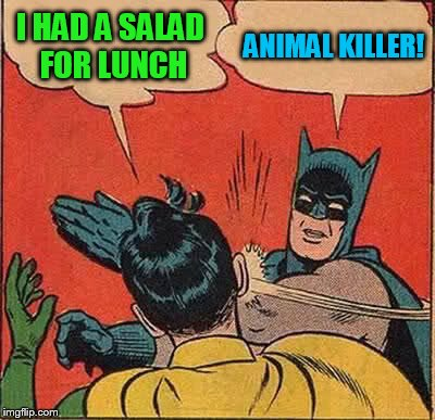 Batman Slapping Robin Meme | I HAD A SALAD FOR LUNCH ANIMAL KILLER! | image tagged in memes,batman slapping robin | made w/ Imgflip meme maker