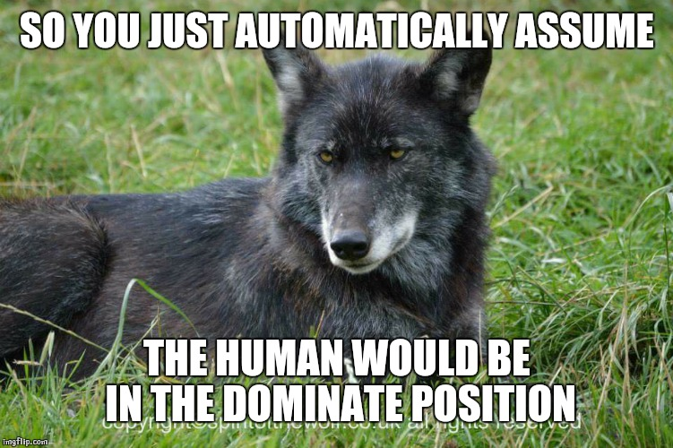 SO YOU JUST AUTOMATICALLY ASSUME THE HUMAN WOULD BE IN THE DOMINATE POSITION | image tagged in disdain | made w/ Imgflip meme maker
