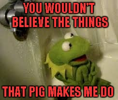 YOU WOULDN'T BELIEVE THE THINGS THAT PIG MAKES ME DO | made w/ Imgflip meme maker