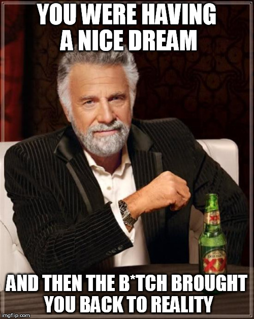 The Most Interesting Man In The World Meme | YOU WERE HAVING A NICE DREAM AND THEN THE B*TCH BROUGHT YOU BACK TO REALITY | image tagged in memes,the most interesting man in the world | made w/ Imgflip meme maker