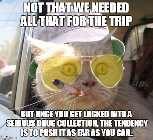 fear and loathing kitty | NOT THAT WE NEEDED ALL THAT FOR THE TRIP BUT ONCE YOU GET LOCKED INTO A SERIOUS DRUG COLLECTION, THE TENDENCY IS TO PUSH IT AS FAR AS YOU CA | image tagged in fear and loathing kitty | made w/ Imgflip meme maker