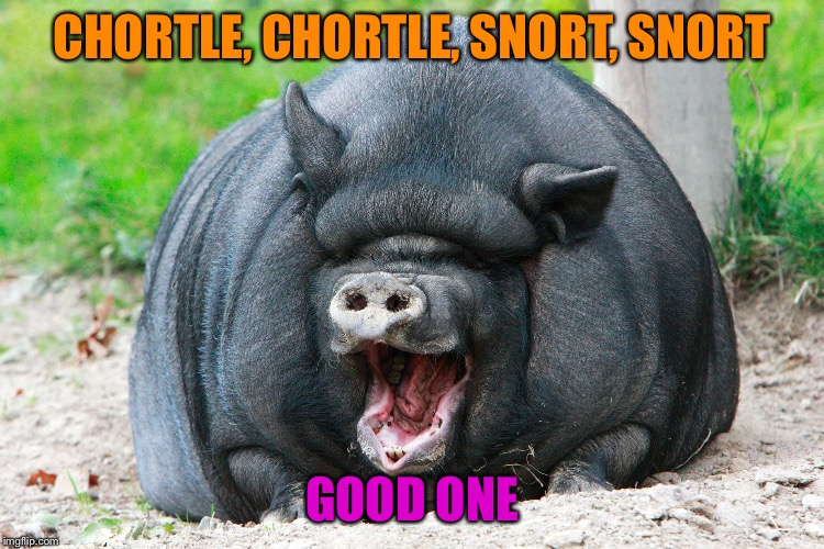 CHORTLE, CHORTLE, SNORT, SNORT GOOD ONE | made w/ Imgflip meme maker