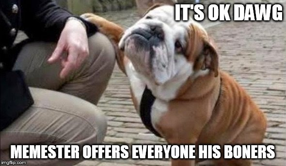 There There Dog | IT'S OK DAWG MEMESTER OFFERS EVERYONE HIS BONERS | image tagged in there there dog | made w/ Imgflip meme maker