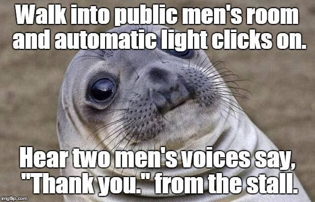 "Awkward Moment Sealion Meme | Walk into public men's room and automatic light clicks on. Hear two men's voices say, ""Thank you."" from the stall. 