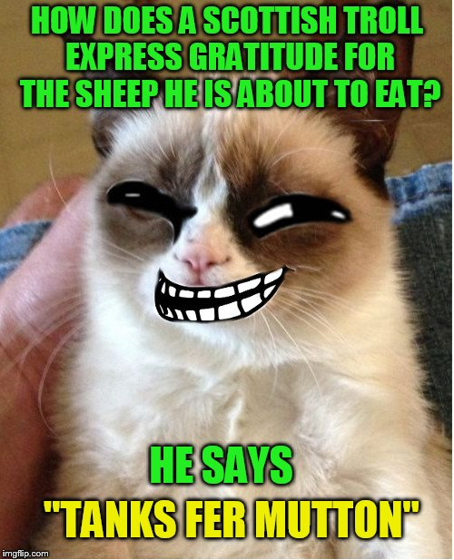 Troll Cat (A johnnyhaul template) | HOW DOES A SCOTTISH TROLL EXPRESS GRATITUDE FOR THE SHEEP HE IS ABOUT TO EAT? HE SAYS ''TANKS FER MUTTON'' | image tagged in funny memes,troll cat,trolls,jokes,noxus,sheep | made w/ Imgflip meme maker