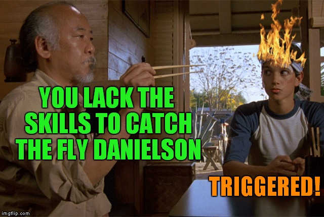Mr. Miyagi gets real... |  YOU LACK THE SKILLS TO CATCH THE FLY DANIELSON; TRIGGERED! | image tagged in mr miyagi,karate kid,triggered | made w/ Imgflip meme maker