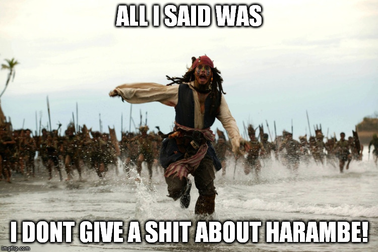 captain jack sparrow running | ALL I SAID WAS I DONT GIVE A SHIT ABOUT HARAMBE! | image tagged in captain jack sparrow running,harambe | made w/ Imgflip meme maker