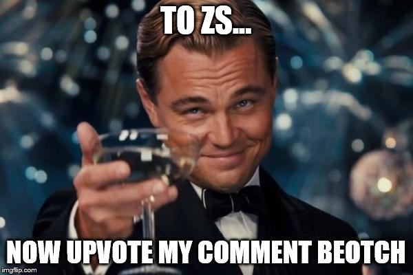 Leonardo Dicaprio Cheers Meme | TO ZS... NOW UPVOTE MY COMMENT BEOTCH | image tagged in memes,leonardo dicaprio cheers | made w/ Imgflip meme maker