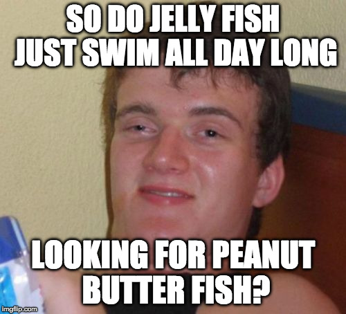Peanut butter jelly time!!!! |  SO DO JELLY FISH JUST SWIM ALL DAY LONG; LOOKING FOR PEANUT BUTTER FISH? | image tagged in memes,10 guy,peanut butter,jelly fish,pbj,iwanttobebacon | made w/ Imgflip meme maker