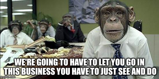 Office monkeys | WE'RE GOING TO HAVE TO LET YOU GO IN THIS BUSINESS YOU HAVE TO JUST SEE AND DO | image tagged in office monkeys | made w/ Imgflip meme maker
